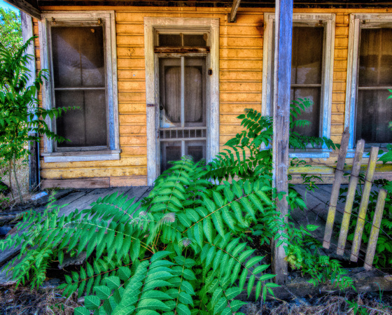 Abandoned House, Chinese Camp, California